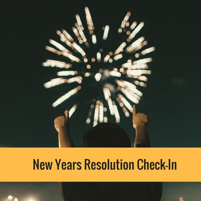 New Years Resolution Check-In