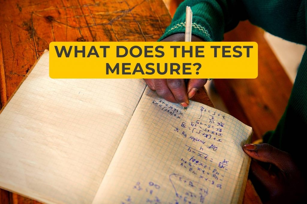 What Does The Test Measure?
